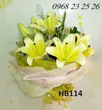 hoa hb114