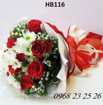 hoa hb116