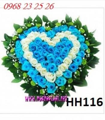 hoa hh116