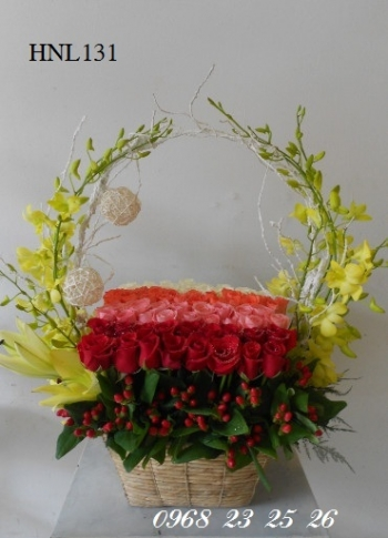 hoa hnl131
