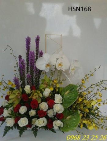 hoa hsn168