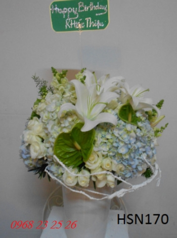 hoa hsn170